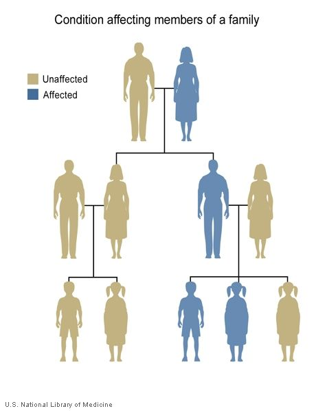 the gene generation parents guide