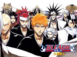 bleach illustrated guide to soul reapers english dub