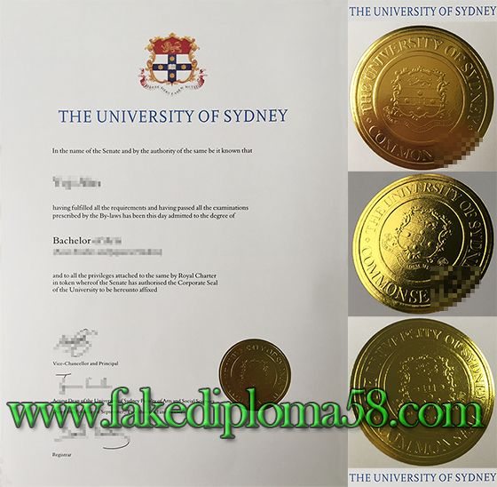 p c and n usyd guide